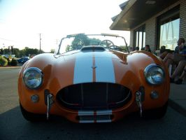 Front of a Cobra by PhotoDrive