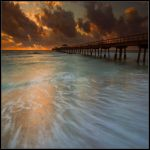 Morning in Florida by IgorLaptev