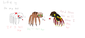 A spider's life is a serious one by Nicey1015