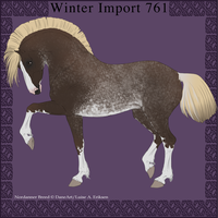 Nordanner Winter Import 761 by DemiWolfe