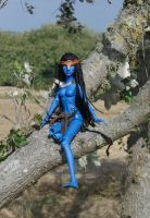 Nym on tree 3 by beedoll