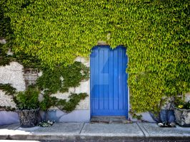 green wall and blue door by alexanderkohn