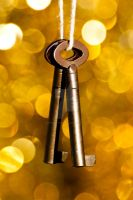 keys in the golden bokeh by SaphoPhotographics
