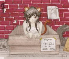 Kitty in a box by elithranielle