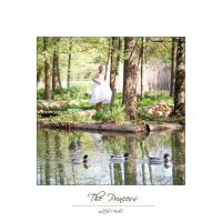 The Princess and the 3 Ducks by jfphotography