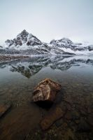 Cold Solitude by GlxyDs