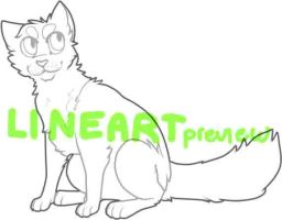 Cat Lineart by AnonAdopts