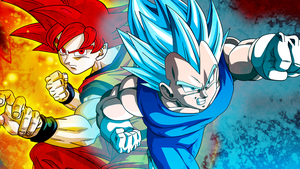 Goku and Vegeta Super Saiyan God Background by ArmorKingTV21