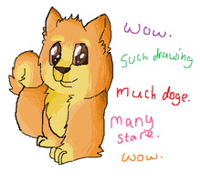 Doge by MiddyLPS