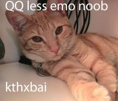 lolcat: QQ LESS emo kid by Psycheen
