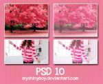 PSD .10 by MyShinyBoy