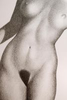 Female Nude Torso by FiguraArto