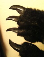 Claws detail by SabrePanther