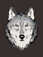 Wolf Shirt by beanarts