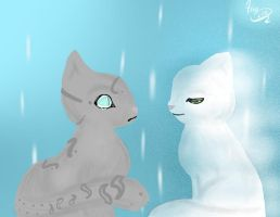 Jayfeather and Half Moon by TeenBeat