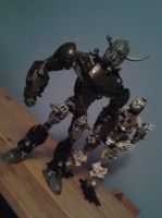 bionicle: the bezerker by CASETHEFACE