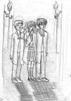Ron, Hermione and Harry by Mariana-S
