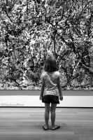 Pollock's Depth by ElieLahoudPinot