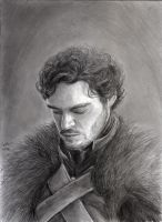 Game of Thrones - The King in The North by INH99