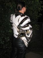 Leather Paladin Armor - Pic 2 by Azmal