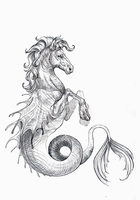 Hippocampus WIP by Woari
