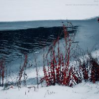 cold water.. by angies-soulshow