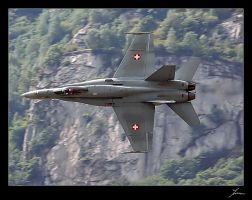 Swiss Hornet by theastronomer