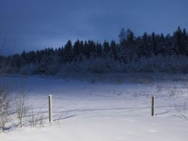 Nightly Winter Scenery 2012 by game-flea
