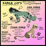 Saber Cat Ref by Galaxys-Most-Wanted