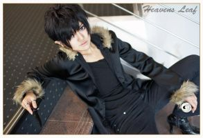Durarara, pic 6 by Heavens-Leaf