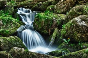Triberg Waterfall HDR 02 by Creative--Dragon