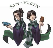 HP - The Slytherin Twins by famira