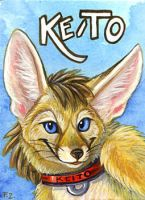 Keito Fennec by Foxfeather248