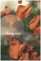 Autumn by Ploster