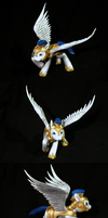 Celestia's Royal Pegasus Guard - Final 1 by frozenpyro71