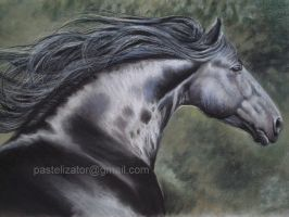 Horse Pastel Friesian Branco by PASTELIZATOR
