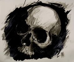 Inkwash Skull by cbernhardt