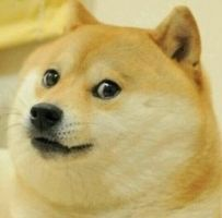 DOGE CURSOR FREE READ DESCRIPTION!!! by AwolOrange