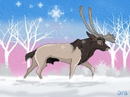 RainDeerInTheSnow by dyb
