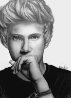 Niall Horan Drawing #3 by val1drawing