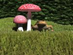 Toad and stools by Oskar-A