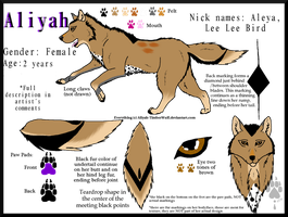Aliyah Reference Sheet by The--Working-Wulf