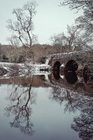 Drum Bridge, Winter Morning by Gerard1972