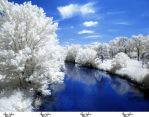 Infrared Stock - 2013 - 41 by ElaineSeleneStock