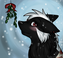 I didn't see any Mistletoe by redninetails