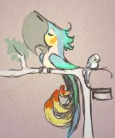 burd by Midsea