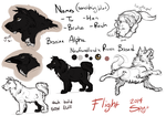Flight Concept: Reich by SpytDragonFyre
