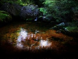Forest Pool by bupaje