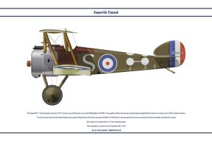 Camel GB 45 Sqn RFC by WS-Clave