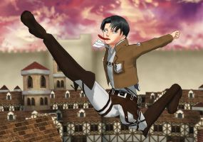 When your sister is a Levi fangirl... by Kohaku-Ume